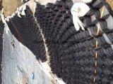 HDPE /PP/Plastic Geocell/Geogrids für Stützmauer und Straßenbau