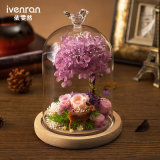 Flor 100% natural real de Rose de la manera en el vidrio para el regalo de la tarjeta del día de San Valentín