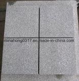 Mattonelle/lastra scure fiammeggiate del granito del Impala di Grey G654 Cina