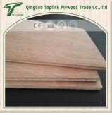Contre-plaqué d'usage d'emballage de qualité inférieure de Shandong