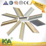 Galvanizado en caliente de papel Nails Strip para furnituring, Decoración, Construcción