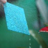 10 ans de feuille gravée en relief par polycarbonate de garantie