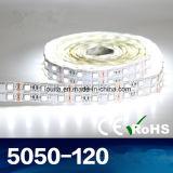 최신 판매 두 배 줄 5050 LED 지구