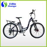Bicicleta elétrica da roda da aprovaçã0 2 do CE com motor sem escova