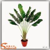 Albero artificiale decorativo all'ingrosso 2015 della pianta di banana dei bonsai della Cina
