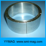 磁石モーターのための強いネオジムアークセグメント磁石