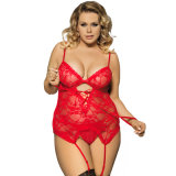 Tamaño Severial Sexy Lingerie Tube Sexy Spandex Babydoll Lingerie