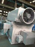 Мотор DC Шанхай электрический электрический с тавром Sec