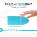 계란 여성 수음 진동기 USB Recharger를 진동하는 10 속도