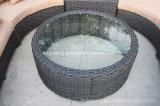 6 partes curvaram mobília ajustada do Rattan do Weave do sofá secional