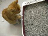 Tofu-Katze-Sänfte - aktiver Bambuskohlenstoff, Stoß in Toliet direkt