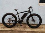 중간 거치된 모터와 토크 센서를 가진 넓은 타이어 전기 자전거