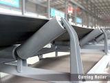 De Rol van de carrier voor de Transportband van de Riem