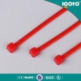 Serres-câble en nylon verrouillés de serre-câble d'Igoto Manufacturered d'individu en nylon coloré des prix modérés