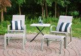 HDPE Personal&#160 d'offre spéciale ; 3 hauteurs Adjustable&#160 ; Table&#160 ; Jardin-Blanc