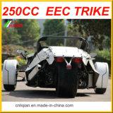 250cc Ztr Trike de la motocicleta