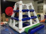 Игрушки 2017 качания спортов воды брезента PVC 0.9mm горячие раздувные для игр T12-011 воды