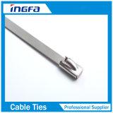 Selbst, der Kabelbinder für industrielle und Tiefbauanwendung sperrt
