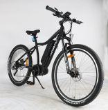 Bici eléctrica de la montaña E del motor inestable