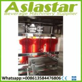 De automatische Lijn van de Bottelmachine van het Mineraalwater van de Kruik van 5 Gallon Plastic