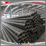 Q195 6m ERW Steel Tube with Black Color