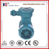 De explosiebestendige Motor Fase van de Inductie van de Enige Elektrische (Elektro)