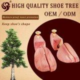 Do logotipo barato ajustável novo do projeto da forma árvores de madeira da sapata