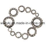 Rondelle de freinage dentelée externe d'acier inoxydable de dents DIN 6797
