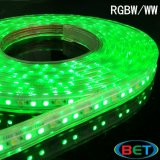 Het openlucht Waterdichte Licht van het Effect buigt 5050 LEIDENE RGBW Rgbww Strook