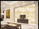 Катушка горячей картины продуктов каменной алюминиевая сделанная в Китае (AE-501)
