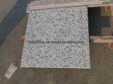 中国Balaの白い花こう岩のタイルか平板またはカウンタートップ