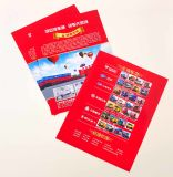Colore Double Side completa Flyer stampa (DPF-001)