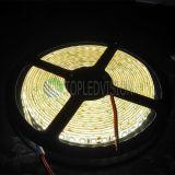 Tira ligera de 2835 LED LED con alto brillante