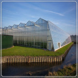 Low Iron Patterned Tempered Horti Diffuse Greenhouse Glas