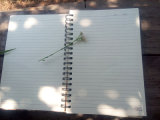 Logo fait sur commande Mini Spiral - Papier d'emballage attaché Paper Notebook avec Elastic