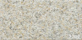 Ceramic Tile granito pared exterior (200X400mm)