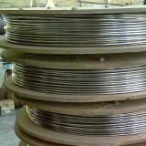 tubo ad alta pressione dell'anello del vapore dell'acciaio inossidabile 316L