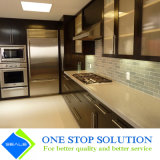 Mobília nova dos gabinetes de cozinha do preço do competidor (ZY 1058)