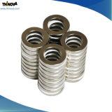 Magneet NdFeB/Neodymium van uitstekende kwaliteit van de Ring van de Douane de Permanente voor Motoren