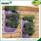 Ventas calientes de Onlylife que cuelgan el plantador vertical del jardín del patio