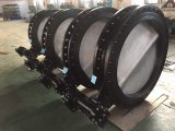 Flangia Butterfly Valve con Casting Iron Matrial