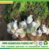 Tela não tecida UV dos PP Ss do estábulo para o controle de Weed