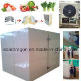 Quarto de armazenamento frio vegetal com temperatura +4~+5degree C