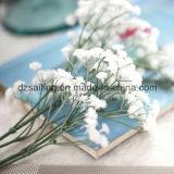 Широко используемые цветки пластичного Gypsophila искусственние в украшении (SF10875)