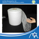 Pp. Nonwoven Fabric für Agriculture Fruit Cover