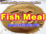 [فيش مل] لأنّ تغطية (بروتين 55% 65% 72%)