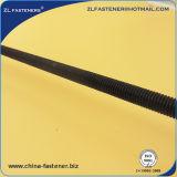 Zwarte Oxyde Ingepaste Staaf DIN975 DIN976