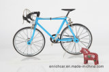 Bicicleta nova do modelo do boutique de 2016 DIY