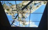 Panneau de mur à panneau plat de la lumière 600*600 DEL de RoHS DEL de la CE de Moodpanel