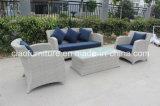 2016 sofás ao ar livre da mobília secional popular do Rattan do projeto 3+1